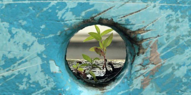4 storie di resilienza e creatività
